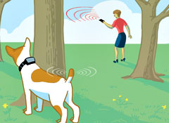How To Track A Lost Animal moreover 161673614818 likewise 272570957495 additionally Gprs Tracking Device 1037020123 likewise Simple Car Gps Tracker For Engine 1500620603. on buy a gps tracker for my car