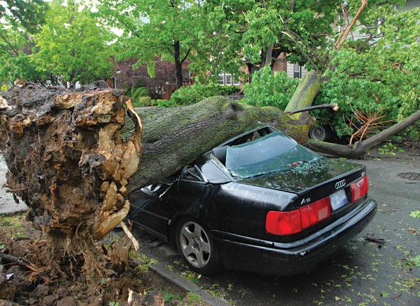 Storm Preparedness-Check for vehicle