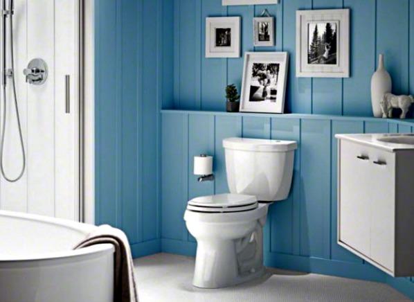 Kohler Toilets Cimarron