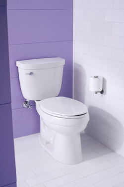 replacing a 20yearold toilet with a new model that carries the us protection watersense label