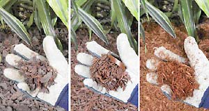 Rubber Mulch Review Consumer Reports